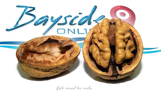 "A split walnut shell rests in two pieces across our Bayside Online Logo with the caption ""We Must Be Nuts"""